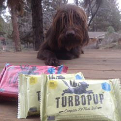 TurboPUP complete K9 meal bar - Bacon Flavor turbopup-bacon